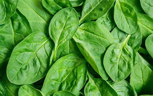 Healthy ingredients: Sexy spinach
