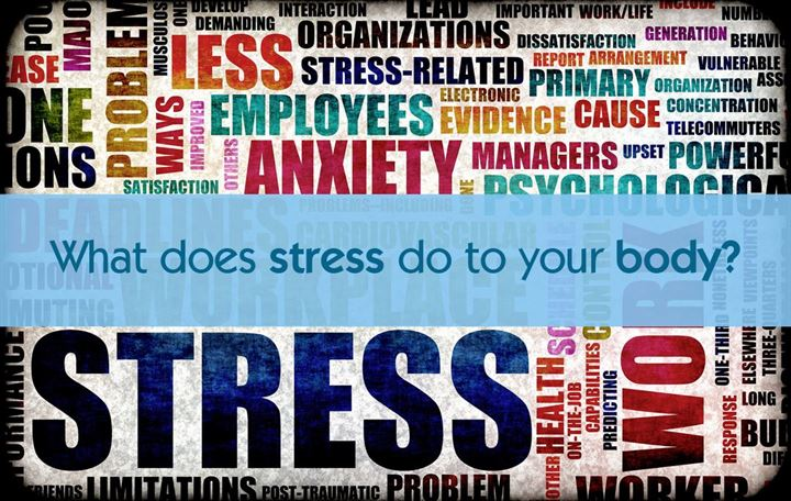 What does stress do to your body?