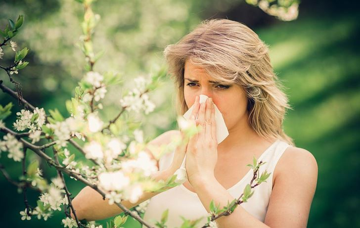 Fight spring allergies with our top 10 tips