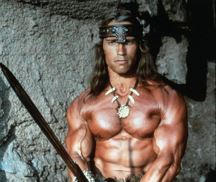 Get an action hero physique with these workout tips the ultimate action hero just one look at arnies body in conan the destroyer is enough to make you want to hit the gym arnie uses dumbbells rather than altavistaventures Images